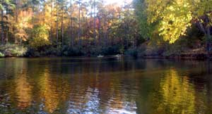 Fall on the lakes at Callaway......